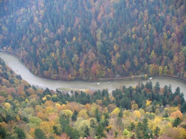 Dunajec poniżej Sokolicy - jesień