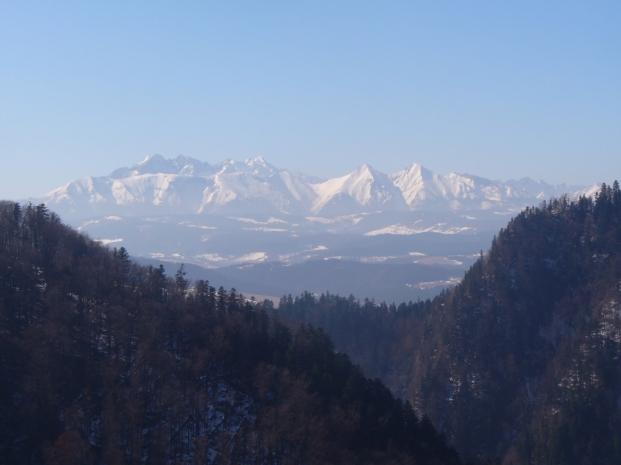 Widok z Sokolicy na Tatry - zima