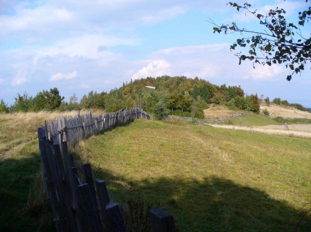 Na polanie pod Jaworzynką, zdjęcie wykonano 30 IX 2008