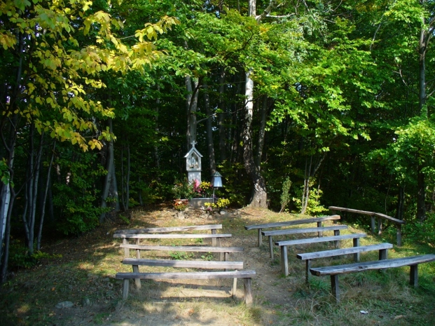 Kapliczka przy szlaku z Łącka na Bukowinę, zdjęcie wykonano 30 IX 2008