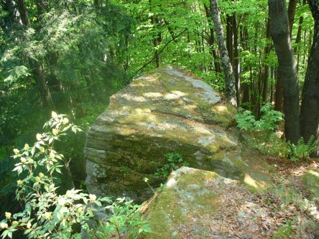Na Diabelskim Kamieniu, zdjęcie wykonano 3 V 2009 r.