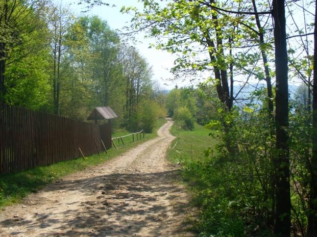 Na szlaku z Gronia do Zawadki, zdjęcie wykonano 3 V 2009