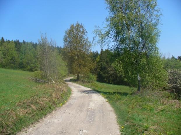 Na szlaku z Kotonia do Zawadki, zdjęcie wykonano 3 V 2009