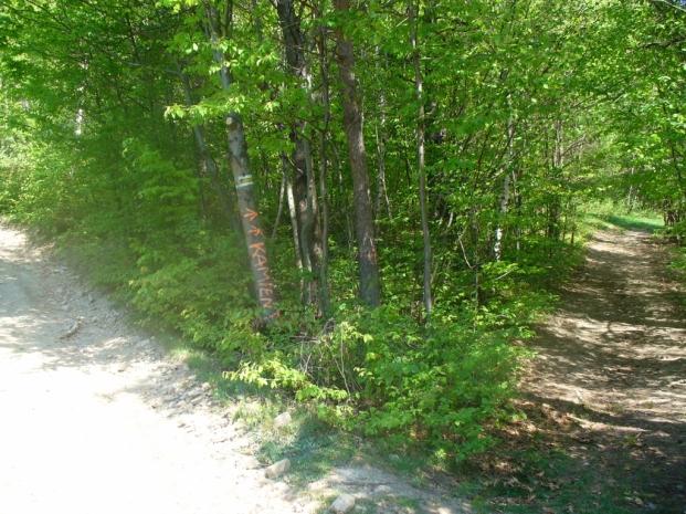 Odbicie drogi do Diabelskiego Kamienia, zdjęcie wykonano 3 V 2009