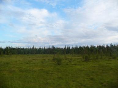 Krajobraz okolic Umby i Warzugi