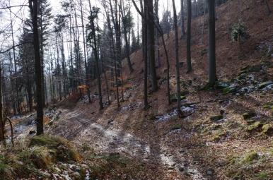 Na szlaku z Czupla do Łodygowic