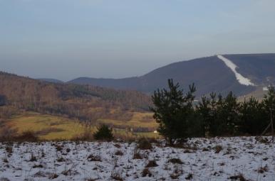 Widok na górę Żar znad Czernichowa