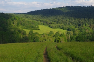 Wzgórza nad Darowem