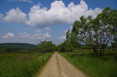 W Dolinie Czeremchy
