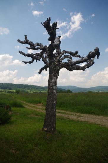 Przy kapliczce na Trakcie Węgierskim