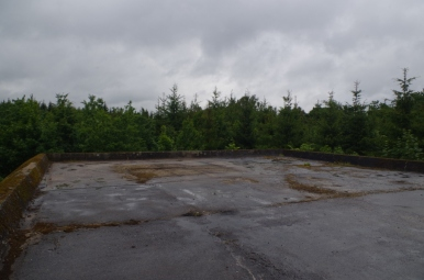 Kompleks Mamerki - na dachu bunkra