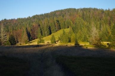 Na szlaku z Przełęczy Borek na Kudłoń, 19 X 2014