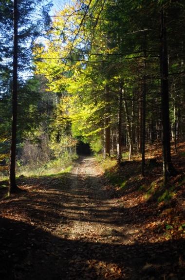 Szlak z Koskowej Góry do Makowa Podhalańskiego