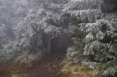 Na szlaku z Hali Rycerzowej na Wielką Rycerzową