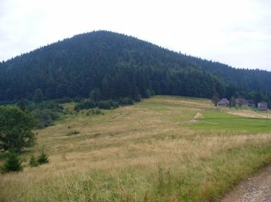 Na Przełęczy Przegibek, zdjęcie wykonano 8 IX 2010 r.