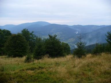 Widok z Praszywki Wielkiej na wschód, zdjęcie wykonano 8 IX 2010 r.