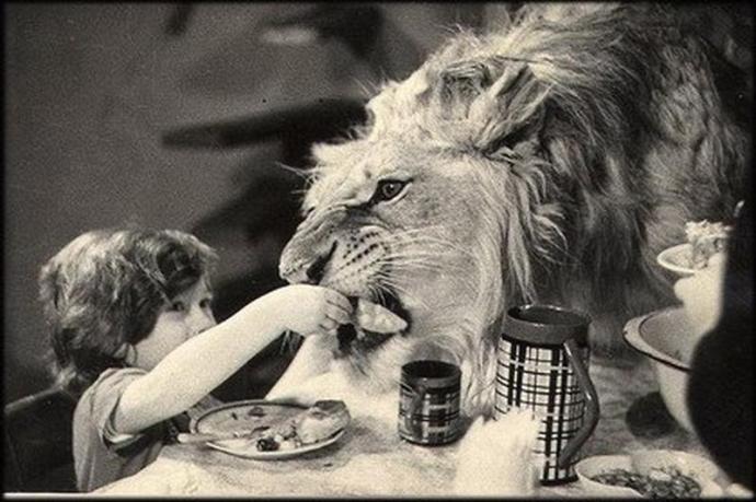Podczas posiłku...