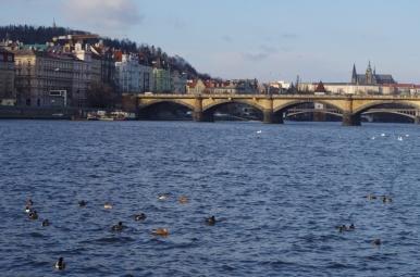 Wybrzeże Wełtawy w Pradze