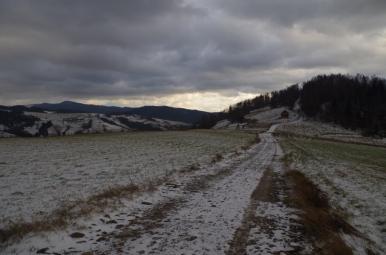 Szlak w okolicy osiedla Jarzębaki