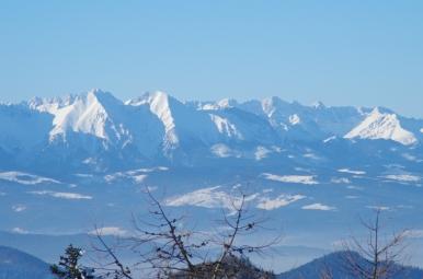 Widok ze schroniska na Przehybie na Tatry