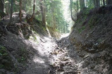 Szlak z Kudłonia do Lubomierza