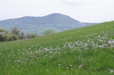 Widok znad Przełęczy Zasańskiej na Grodzisko