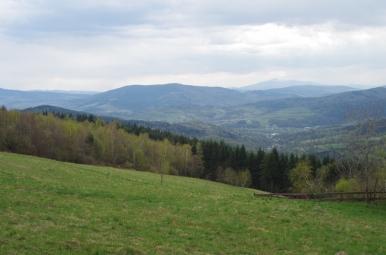 Widok spod Kudłaczy w kierunku Babiej Góry