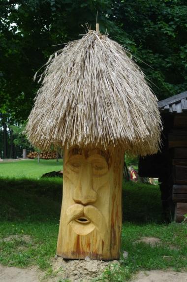 Gaj Szewczenki - ul