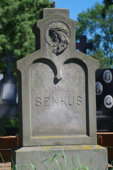 Na cmentarzu w Żółkwi - polski nagrobek