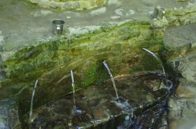 Źródełko w pobliżu klasztoru w Krechowie, Jaworowski Park Narodowy