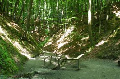 Jaworowski Park Narodowy