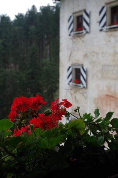 Zamek Predjama