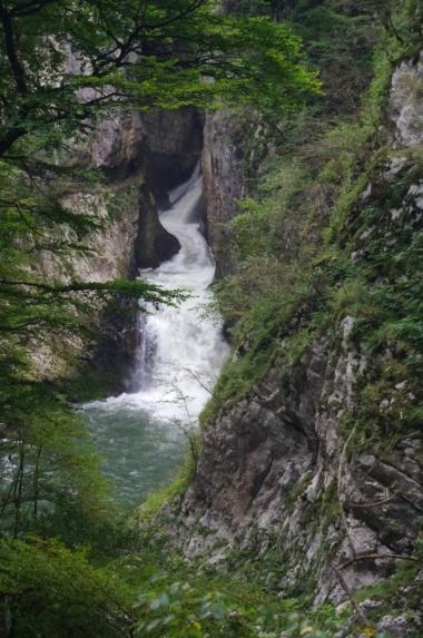 Jaskinie Szkocjańskie - rzeka wpływająca do jaskini