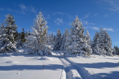 Zima pod Ćwilinem