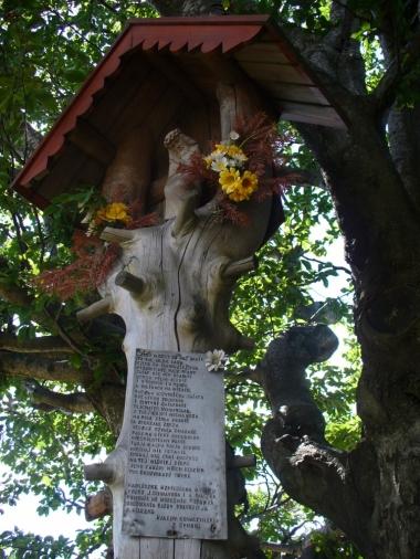 Kapliczka na Ćwilinie, zdjęcie wykonano 10 VIII 2008 r.