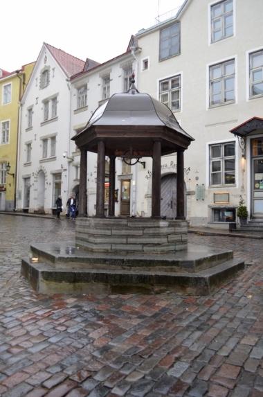 Kocia studnia, Tallin