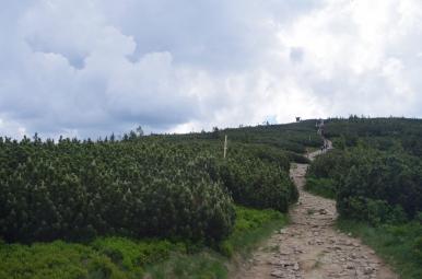 Góra Trzech Kopców